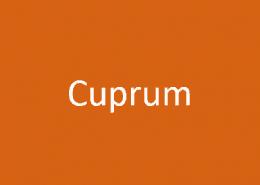 Cuprum – Das Paket der Mittelklasse