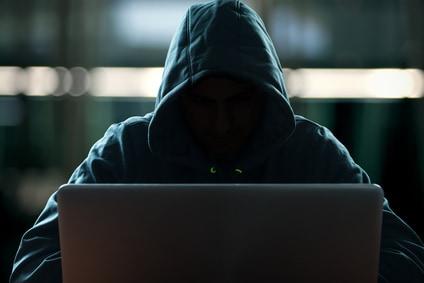 Hacker, Virenschutz und Co. bei der Lanz Services GmbH